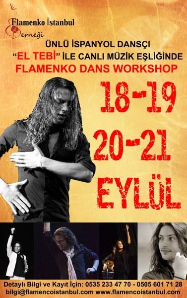 flamenko dans kursu