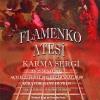 1.Uluslararası Flamenko İstanbul Festivali Flamenko Ateşi Karma Sergi Küratör Banu Devrim