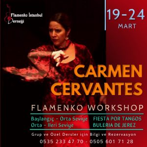 carmen_cervantes_workshop