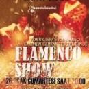 Flamenko İstanbul Gösteri Grubu 26 Ocak Cumartesi Günü Ortaköy Kültür Merkezinde
