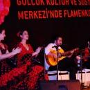 Flamenko İstanbul Gösteri Grubu