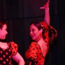 Canlı Müzik Eşliğinde Flamenko Dans Kursu